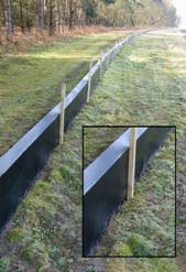 Newt Fencing Welcome To Newt Fencing